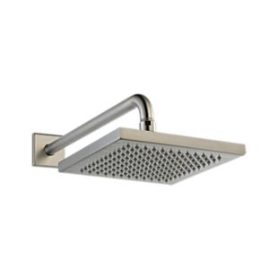 Delta Metal Raincan Shower Head Assembly