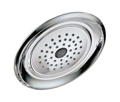 Delta Single-Setting Raincan Shower Head