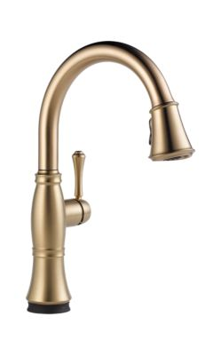 Cassidy™ Single Handle Pull-Down Kitchen Faucet with Touch2O and ShieldSpray Technologies