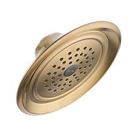 Leland Single-Setting Raincan Shower Head